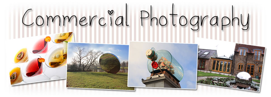 Fitzgerald Photographic - Commercial Prices